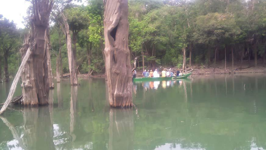 Kano ekspedition