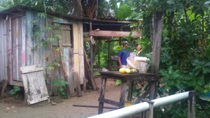 Amazonas Landsby i det høje